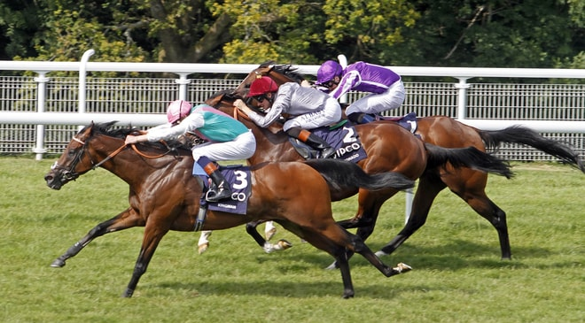 On-Course Betting Operators Require Further Clarification